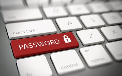 Passwords – The bane of peoples lives?